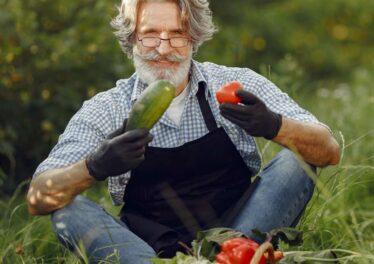 concimi naturali per orto